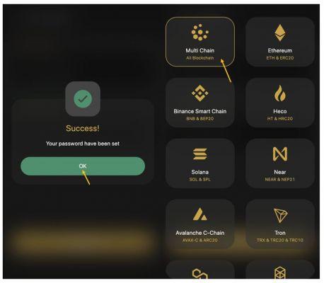 Xác nhận đặt mật khẩu thành công và chọn mục Multi Chain để tạo ví
